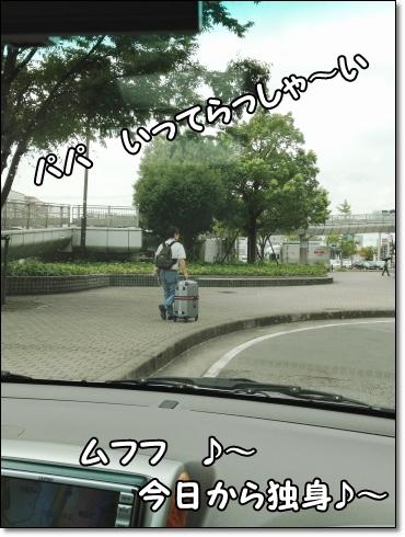 IMG_2129 (1)