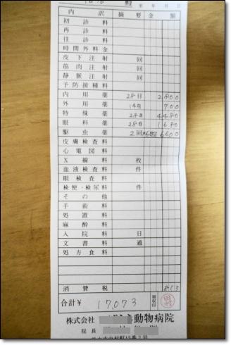 DSC09171 (1)