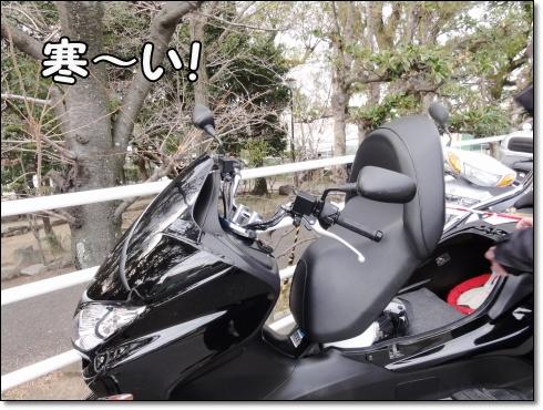 DSC08546 (1)