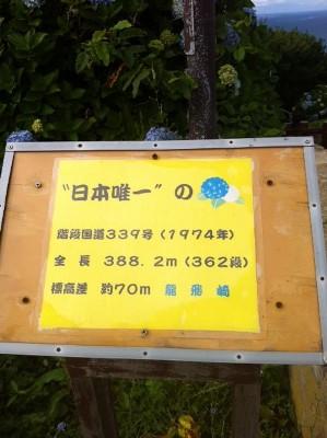 2012080766.jpg