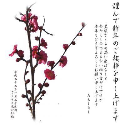 平成25(2013)年年賀