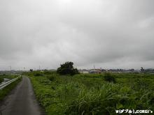 2012081003.jpg