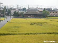 2012102005.jpg