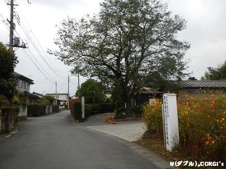 2012111205.jpg