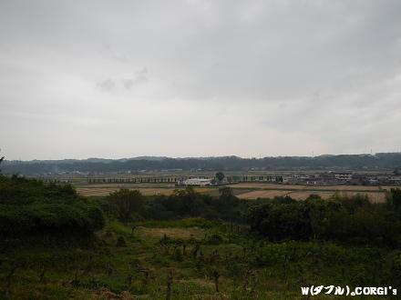 2012111206.jpg