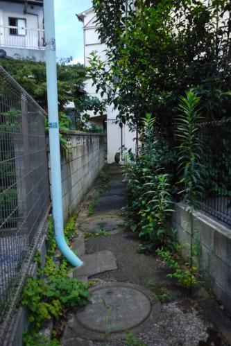 20120715_23.jpg