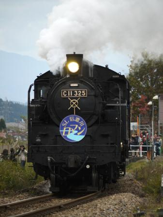 P1190128.jpg