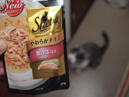 シーバのスープ