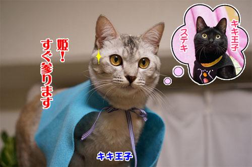 ジジちゃん&キキちゃん♪