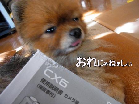 20120516_15.jpg