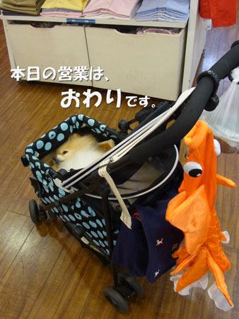 20120610_11.jpg