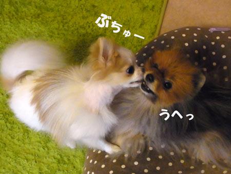 20120610_12.jpg
