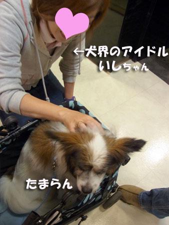 20120614_11.jpg
