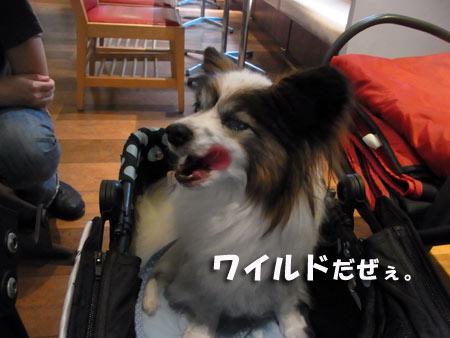 20120614_15.jpg