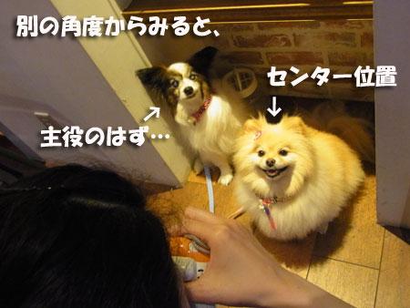 20120614_5.jpg