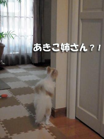 20120701_14.jpg