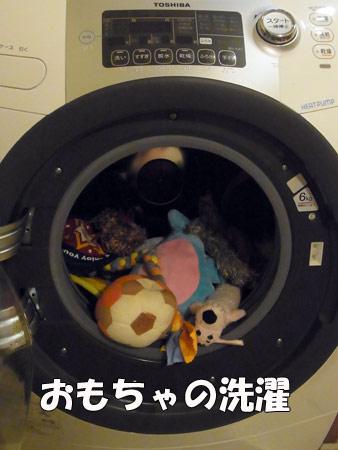 20120718_2.jpg
