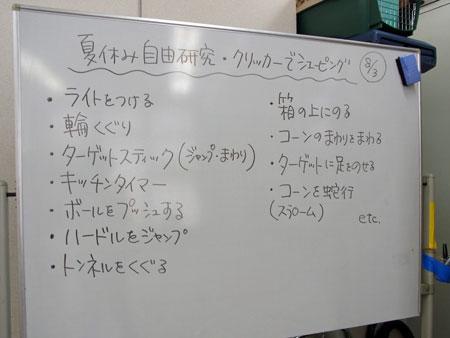 20120805_5.jpg