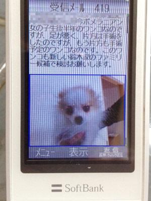 20121011_1.jpg