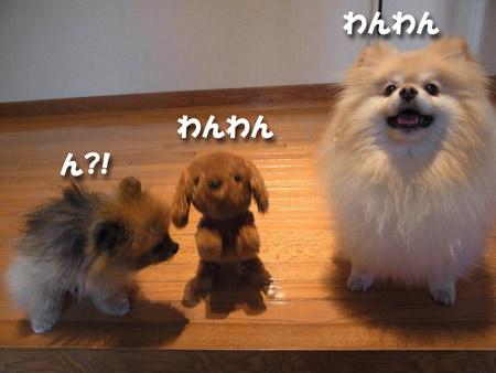 20121011_16.jpg