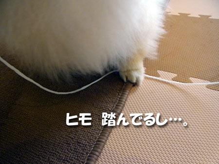 20121013_6.jpg