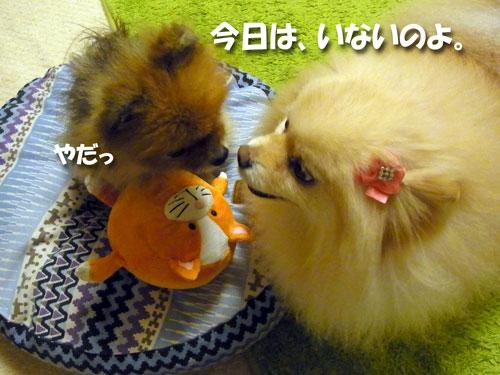 20121108_11.jpg