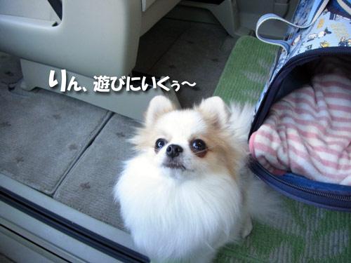 20121108_12.jpg