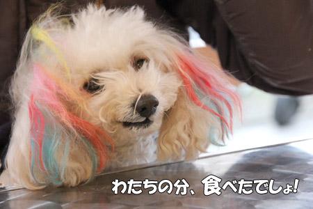 20121201_21.jpg