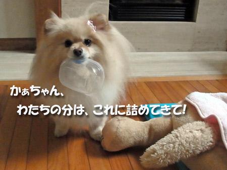 20121201_35.jpg