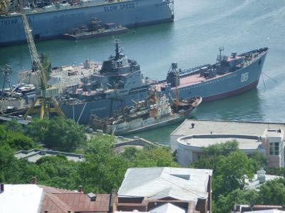ロシア太平洋艦隊の大規模演習 ...