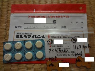 狂犬病注射3