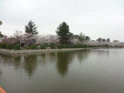 九華公園4