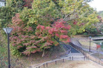 亀山公園2