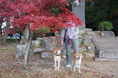 亀山公園4