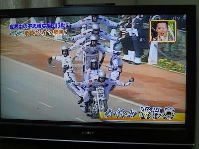 4_20130122173201.jpg