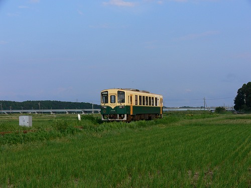 P1210913.jpg