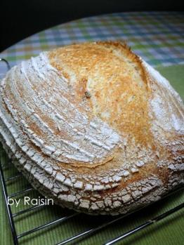20120525らでぃか粉とライ麦のカンパbyレーズン酵母
