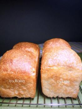 20120721ハードトーストbyレーズン酵母&梅酵母