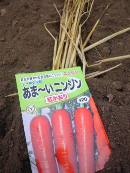 20120725あま~い人参