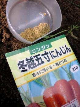 20120725冬越人参