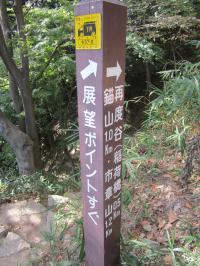 六甲山 2