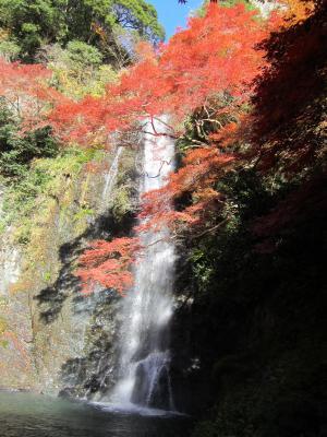 箕面滝 1