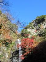 箕面滝 2