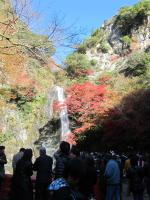 箕面滝 3