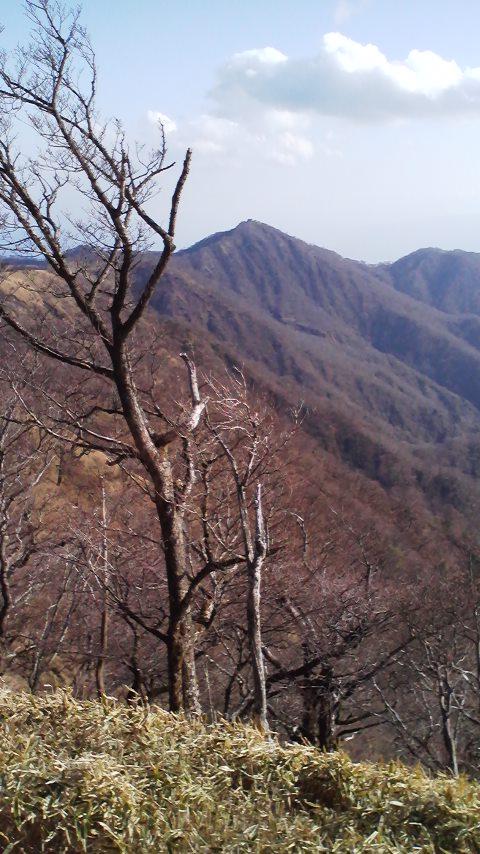 塔の岳山頂※
