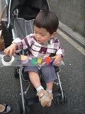 120425_鯉にぼり (2)