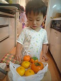 121019_みかんと柿