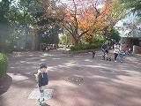 121118_動物園紅葉