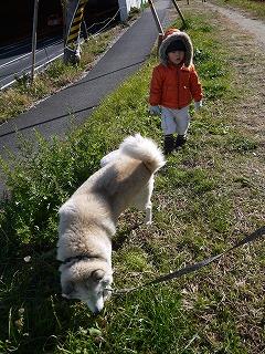 130101_ランディのお散歩 (6)
