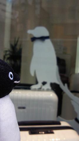 20130202-ペンギン